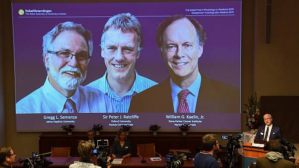 Image: Winners of the 2019 Nobel Prize in Physiology or Medicine (L-R) Greg
