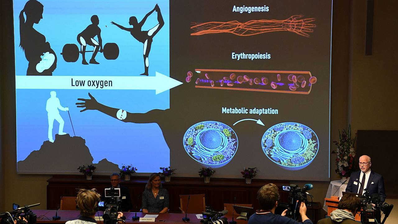 Image: Nobel Assembly member Randall Johnson explain the research field of