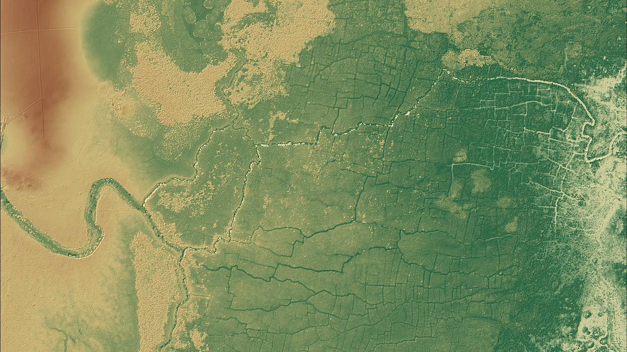 Laser scanning tech uncovers huge network of ancient Maya farms