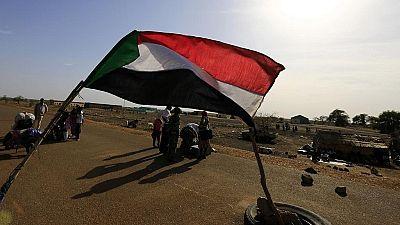 Soudanais expulsés: des milliers de manifestants réclament la démission d'un ministre belge