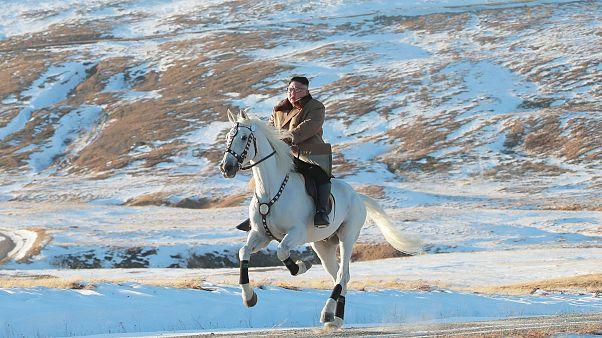 Image: North Korean leader Kim Jong Un riding a white horse amongst the fir