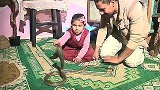 Un chasseur de crocodile égyptien aide les habitants en attrapant des serpents [no comment]