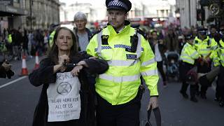 Image: Police officers remove Extinction Rebellion climate change protester