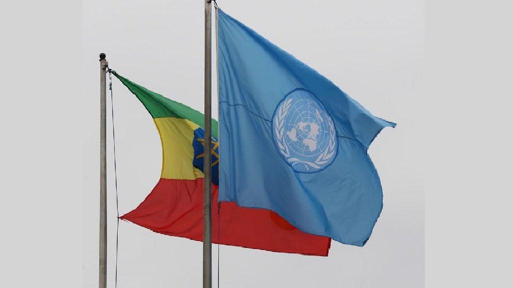 Ethiopia must rework anti-terror laws, free more detainees - U.N.