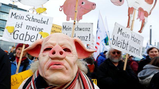 """""""Kein Schwein braucht Tierfabriken!"""" Zehntausende & Bauern mit 150 Traktoren in Berlin"""