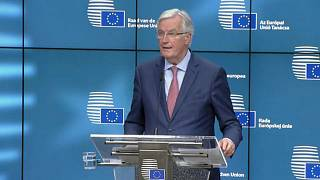 The Brief from Brussels - the focus on Brexit