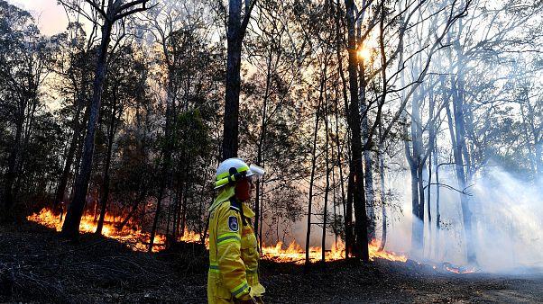 Image: Australia bushfire