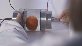 Πιο φρέσκα και υγιεινά τρόφιμα χάρις στα παλλόμενα ηλεκτρικά πεδία