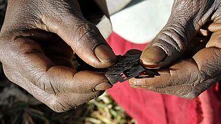 Mutilations génitales féminines : trois pays africains détiennent le plus fort taux de prévalence de ces pratiques