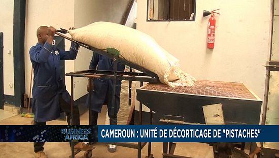 """Cameroun : unité de décorticage de """"pistaches"""""""
