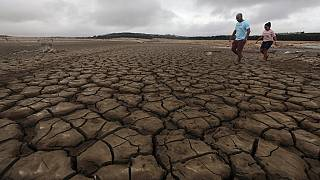 'Pray For Rain': Govt urges South Africans amid looming water shortage