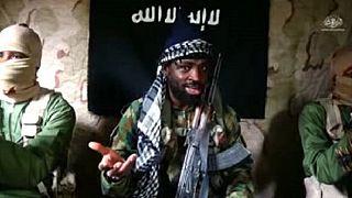 Boko Haram releases 3 varsity professers and 10 policewomen - Nigeria govt