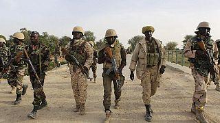 Cameroun :six militaires et deux civilstués par des braconniers