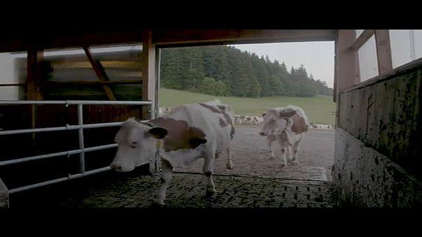 Csökkentené az agrártámogatásokat az EU