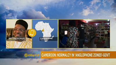 Cameroon: information minister speaks with Africanews on crisis [The Morning Call]
