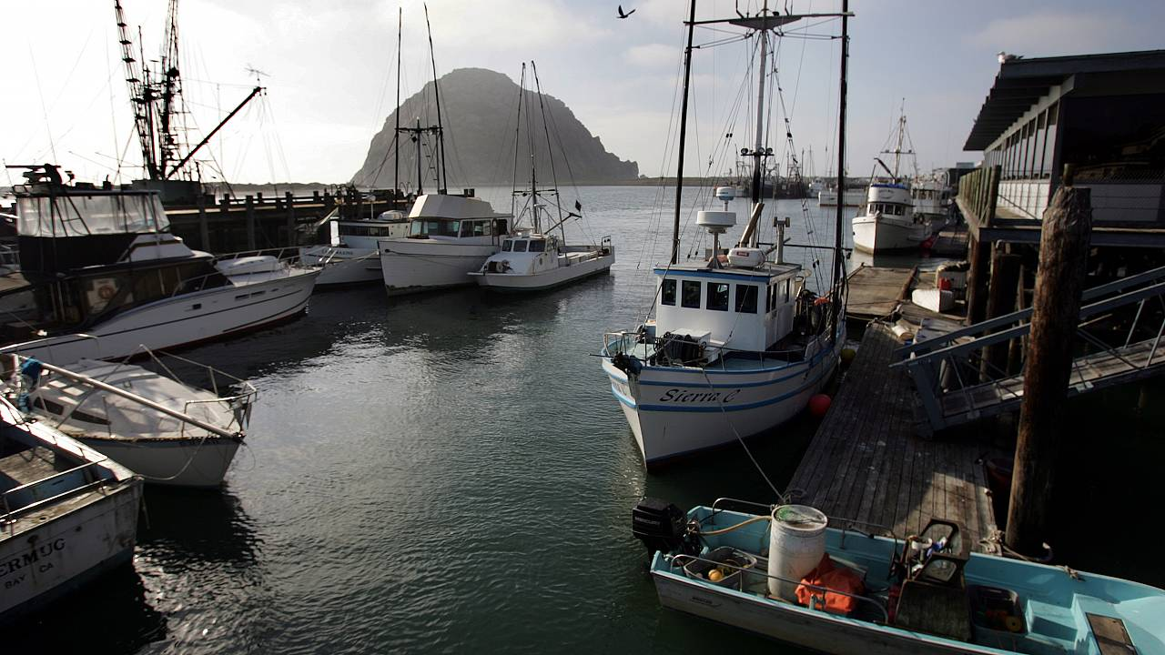 Image: View of Morro Bay commercial fishing vessels docks in harbor Febuary