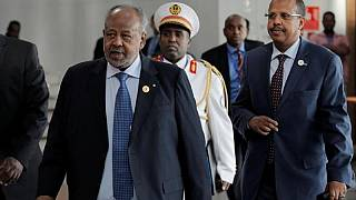 Djibouti ruling party claims landslide parliamentary win