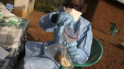 Death toll from Lassa fever reaches 72 in Nigeria