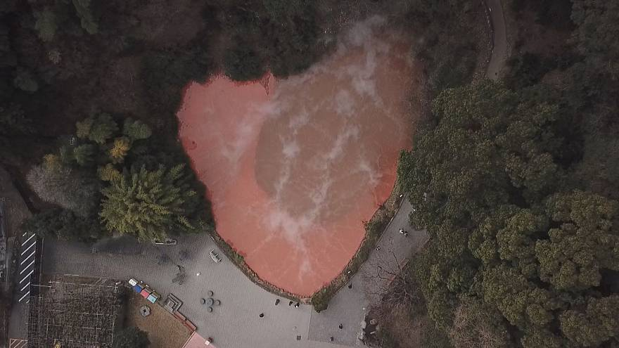 Warm enough for a crocodile: exploring Japan's hot springs