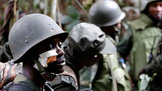 Uganda's ADF rebels behind attacks on UN soldiers in Congo