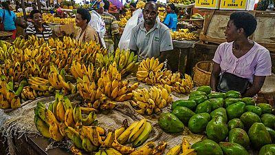 L'économie rwandaise progresse de 6,1%