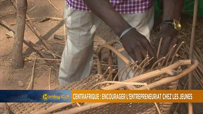 Promoting youth entrepreneurship in C.A.R [The Morning Call]