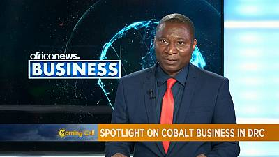 Spotlight on cobalt business in DRC [Business Segment]