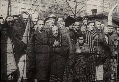 Holocaust survivors behind a barbed wire fence after the liberation of Auschwitz-Birkenau in 1945.