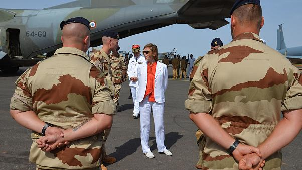 Image: French Minister of Army Forces Florence Parly stands meets French of