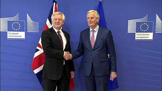 Brief from Brussels: Brexit 'decisive step' and farmer protest