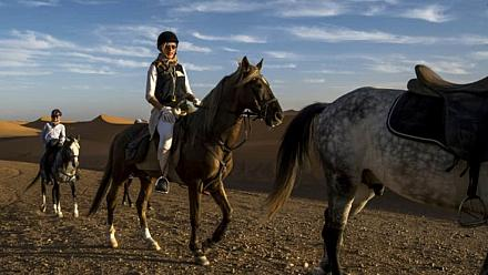 Desert stallion race pushes riders' limits [No Comment]