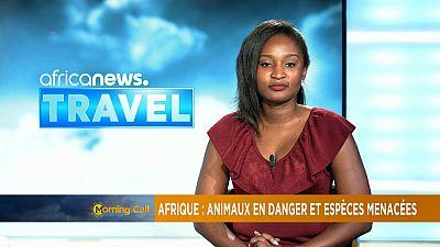 Endangered African Species [Travel]