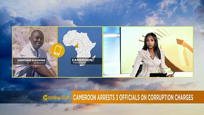 Three Cameroonian public figures imprisoned over corruption [The Morning Call]
