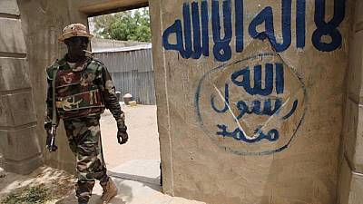Nigeria gov't seeks permanent ceasefire with Boko Haram