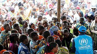 """Une """"assistance internationale immédiate"""" pour la RDC"""