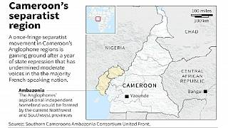 U.K. cautions citizens over Anglophone crisis in Cameroon travel alert