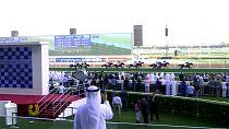 Horse Power: The inside track on the 2018 Dubai World Cup