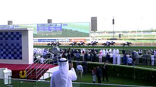 Horse Power: The inside track on the 2018 Dubai World Cup