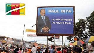 Cameroon ruling party wins 90% of elective senate seats