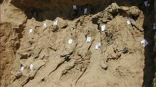 Image: A test trench dug by Physicians for Human Rights forensic experts in