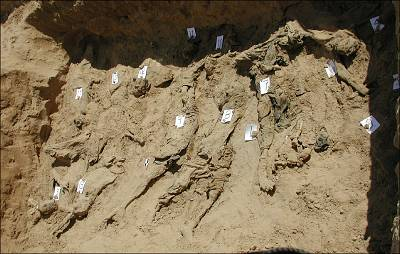 A test trench dug by Physicians for Human Rights forensic experts in Dasht-e-Leili, Afghanistan, as part of an investigation at the mass grave in 2002.