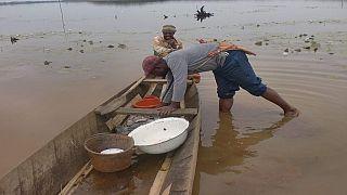 Cameroun : six morts et deux disparus dans un naufrage au nord-ouest (médias)
