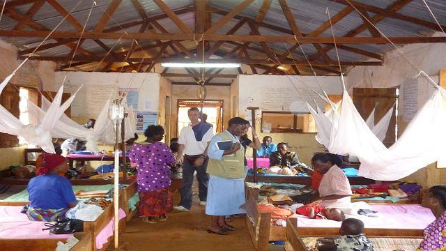 Afrique : à la recherche des moyens efficaces de lutte contre le paludisme