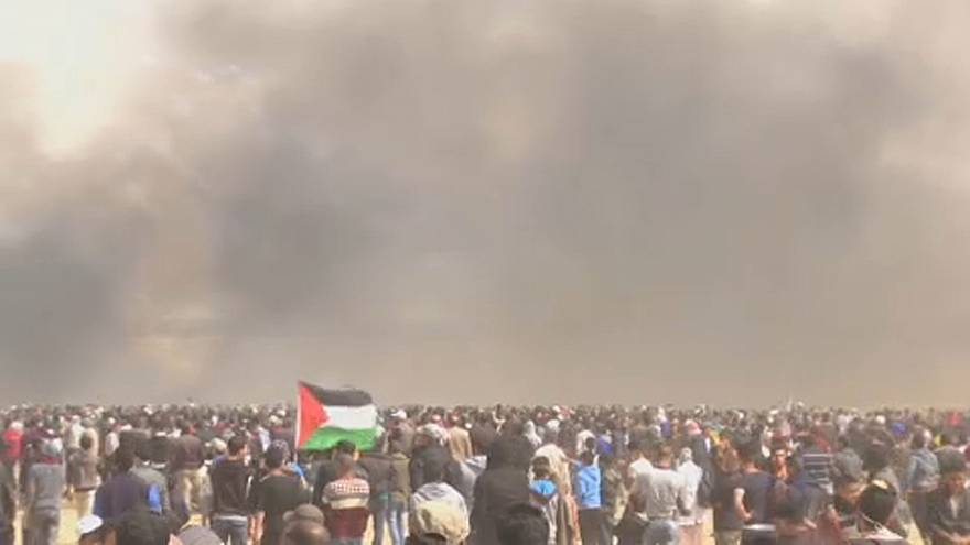 Violence in the Gaza Strip - European lawmakers weigh in
