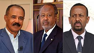 Eritrea, Djibouti, Ethiopia hosts top U.S. diplomat on East Africa tour