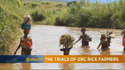 The trials of DRC rice farmers [The Morning Call]