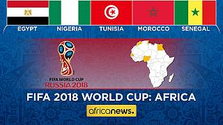 Africanews coverage of Africa at Russia 2018 World Cup