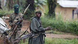 DRC: Kidnapped Britons released unharmed
