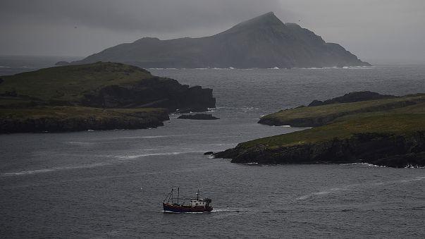 The Brief analiza el impacto del brexit en el sector pesquero