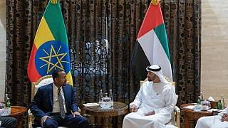 All Ethiopians in UAE jails to be released, 690 freed by Saudi return